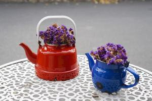 Vintage teapots with purple dry flowers photo