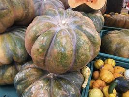 Pumpkins displayed on a store