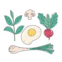 alimentos saludables nutrición dieta orgánica cebolla huevo remolacha seta