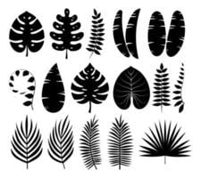 Tropical leaves silhouettes collection vector