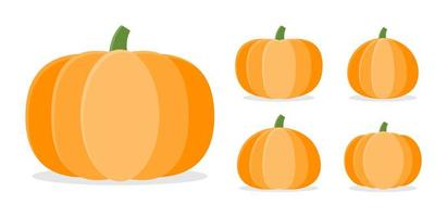 Collection of autumn pumpkins in different shapes