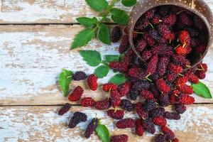 Bowl of mulberries photo