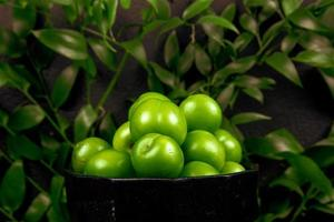 Sour green plums in a bowl in front of green leaves photo