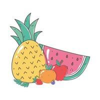 pineapple watermelon orange fruits organic healthy food natural vector