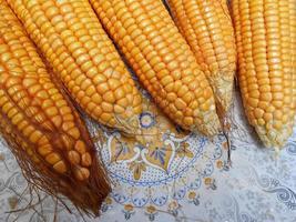maíz dulce fresco