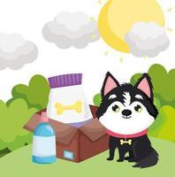 Perro sentado con comida en caja mascotas al aire libre