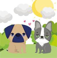 dogs pug and boston terrier sitting in the grass pets vector