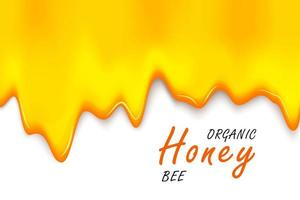 Paper cut style bee with honeycombs. Template design for beekeeping and honey product. vector