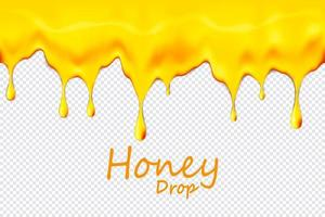Seamless dripping honey repeatable isolated on transparent background, vector art and illustration.