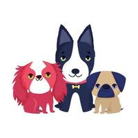 little dogs sitting canine domestic cartoon pets vector