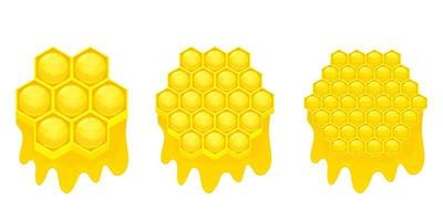 Honeycomb vector design illustration isolated on white background