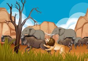 Grupo de animales salvajes africanos en la escena del bosque vector