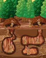 Underground animal hole with many rabbits vector