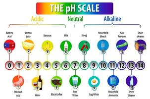 The pH Scale diagram on white background