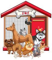 grupo de mascotas sobre fondo blanco vector