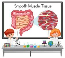 Young scientist explaining smooth muscle tissue in front of a board with laboratory elements vector