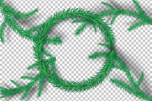 Christmas tree branches on transparency background