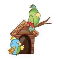 cute animals, green and blue parrots in branch cartoon