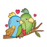 cute animals, couple parrots in branch tree love cartoon vector