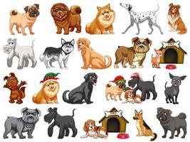 Diferentes perros divertidos en estilo de dibujos animados aislado sobre fondo blanco. vector