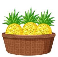 Pineapples in the basket isolated on white background vector