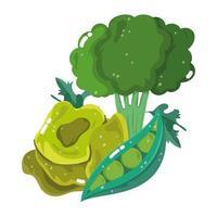 menú de ingredientes de alimentos verduras frescas de dibujos animados brócoli guisantes y lechuga