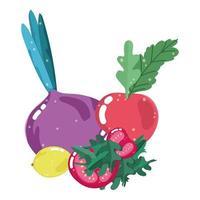 food healthy nutrition vitamin fresh organic beet radish tomato and lemon vector