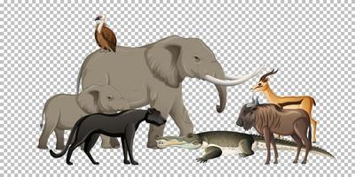 Group of wild african animals