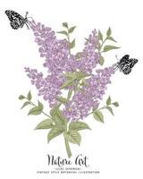 dibujos de flores lilas o syringa. vector