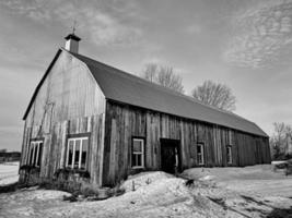 Ulverton, Quebec, Canada, March 9, 2020 - A barn and a dog.