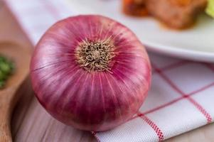 Red onion on a red and white handkerchief