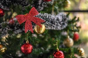 primer plano, de, un, lazo rojo, en, un, árbol de navidad