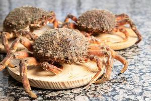 tres cangrejos en losas de madera foto