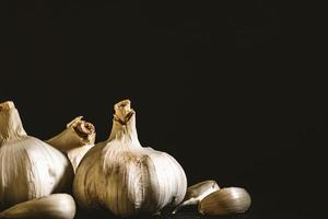 Garlic on a dark background