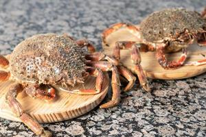 Crabs on wood slabs