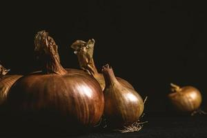 Onions on a dark background
