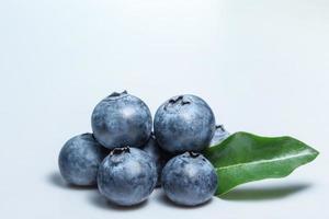 Blueberry close-up photo