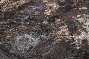 textura de madera de fondo