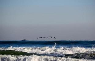 Two pelicans flying over the ocean
