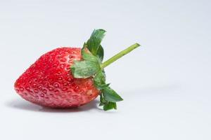 fresa sobre fondo blanco