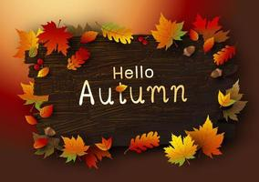 Autumn leaves on brown wood background vector