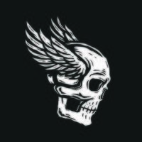 Skull head with wings vector