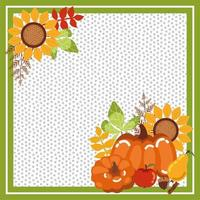 frame with pumpkins of autumn and sunflowers