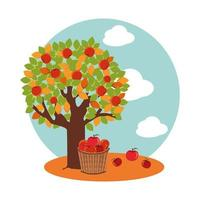 tree of apples in autumn with wicker asket