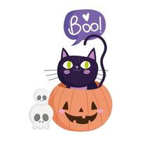 happy halloween, skulls black cat inside pumpkin, trick or treat party celebration vector