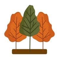árboles forestales temporada follaje otoño diseño aislado fondo blanco vector