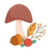 autumn mushroom acorn berry branch leaf isolated design white background vector
