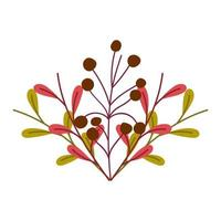nature foliage leaves and berries isolated icon design vector