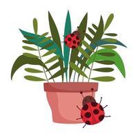 happy garden, potted plant foliage ladybugs decoration vector