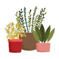 jardín feliz, plantas en macetas flores decoración de la naturaleza vector